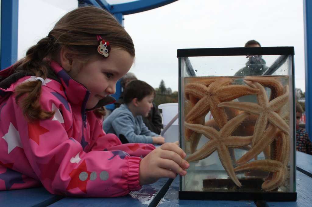 Mull Aquarium things to do with children on mull and iona